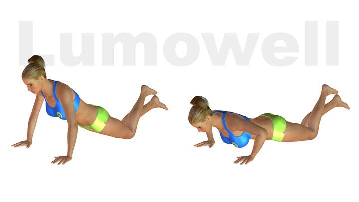 Piegamenti sulle braccia con ginocchia a terra esercizio for Esercizi x interno braccia