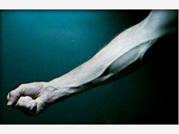 Esercizi braccia for Esercizi x interno braccia