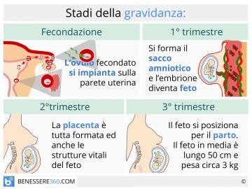 37 settimane di dolore costante in gravidanza nella zona pelvica