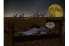 Rimedi per l'insonnia: farmaci, prodotti naturali ed omeopatici per dormire