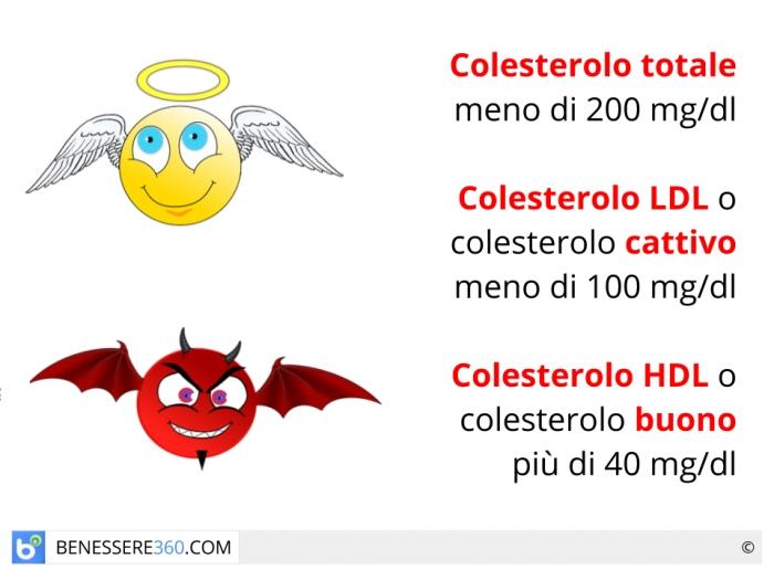 colesterolo totale e hdl