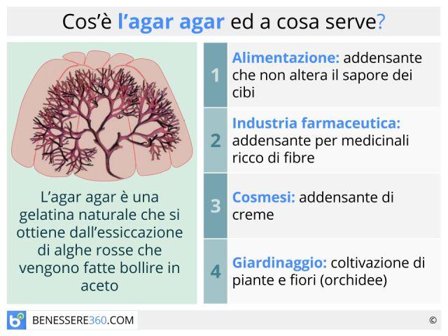 Agar Agar: funziona per dimagrire? Proprietà, usi e dosi dell'alga
