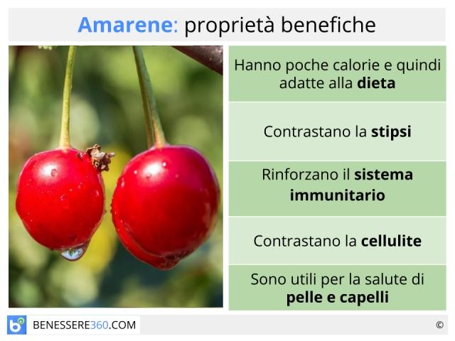 Amarene: proprietà, benefici, valori nutrizionali e ricette