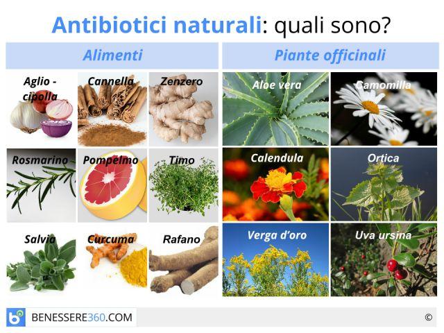 Antibiotici naturali: quali sono? Alimenti, piante e preparati