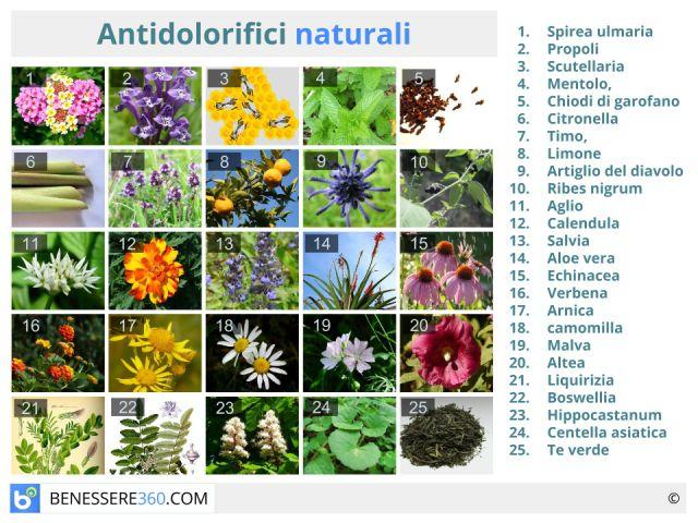 Antidolorifici naturali ed omeopatici: benefici e controindicazioni