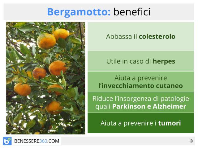 Bergamotto: proprietà, benefici, uso e controindicazioni