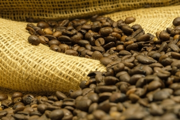 estratto di caffè verde java sottile prima e dopo