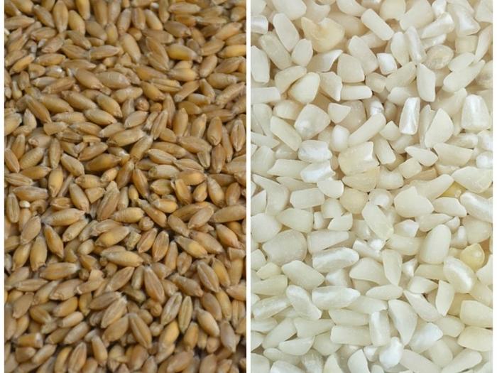 tutti i cereali di crusca vengono utilizzati per perdere peso