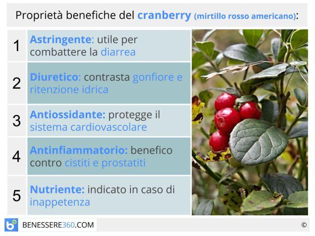 Cranberry: proprietà, valori nutrizionali, benefici e controindicazioni del mirtillo rosso americano