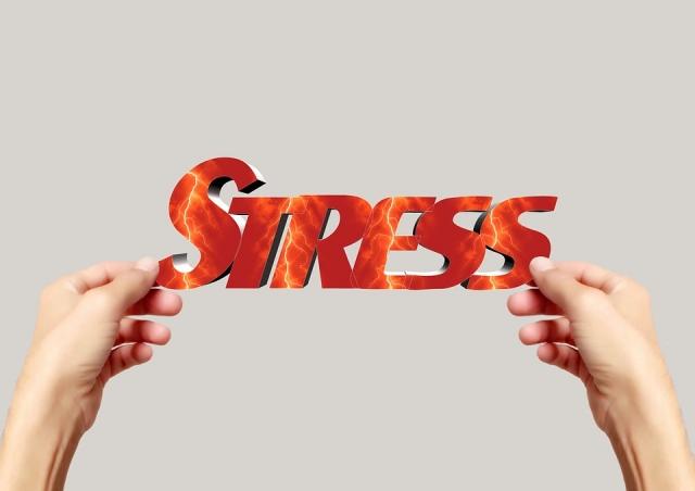 Dieta antistress: funziona? Alimenti e menù di esempio