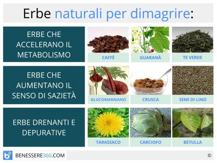 Erbe dimagranti naturali piante efficaci per dimagrire for Dimagrire interno coscia benessere 360