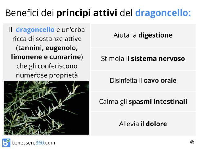 Dragoncello: proprietà, benefici ed utilizzi della spezia