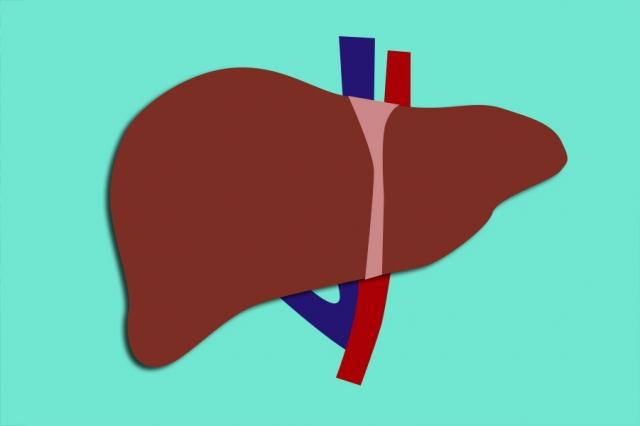 Fegato ingrossato: sintomi, cause, dieta e rimedi