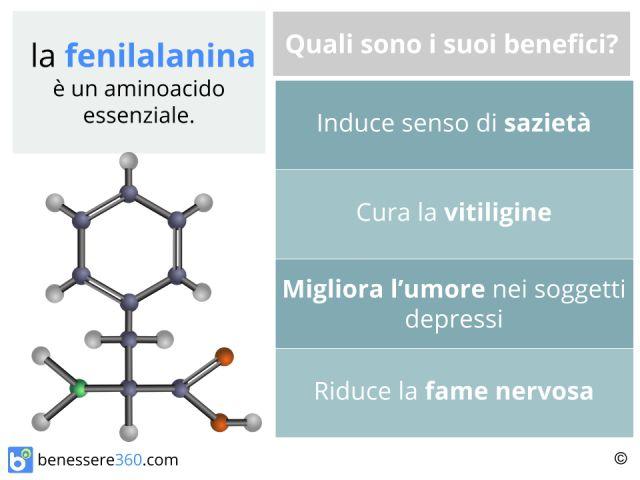 Fenilalanina: cos'è? Proprietà, alimenti, effetti collaterali e controindicazioni
