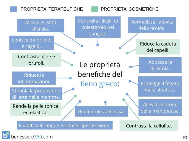 Fieno greco: proprietà e benefici: Fa ingrassare? Controindicazioni ed effetti collaterali