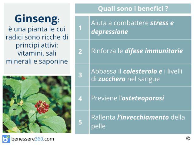Ginseng: proprietà, benefici, controindicazioni ed effetti collaterali