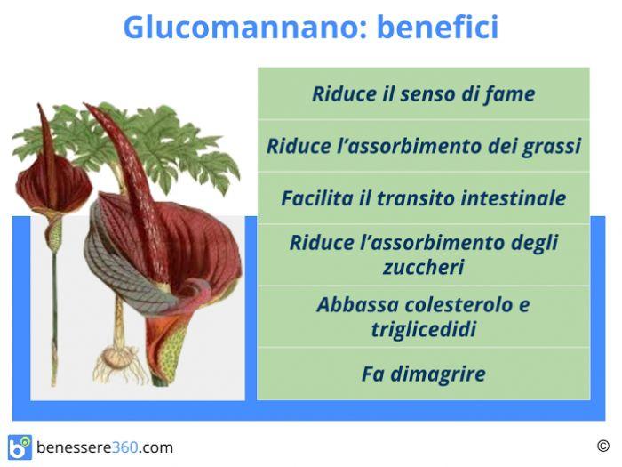 Glucomannano fa dimagrire funziona propriet e for Dimagrire interno coscia benessere 360