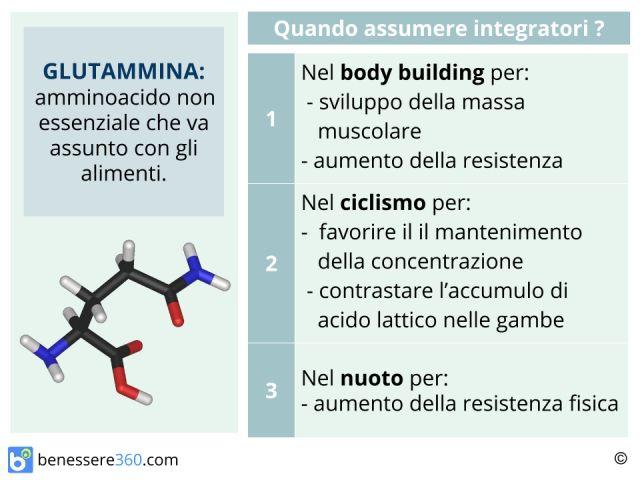 Glutammina: assunzione, dosaggio, effetti e controindicazioni