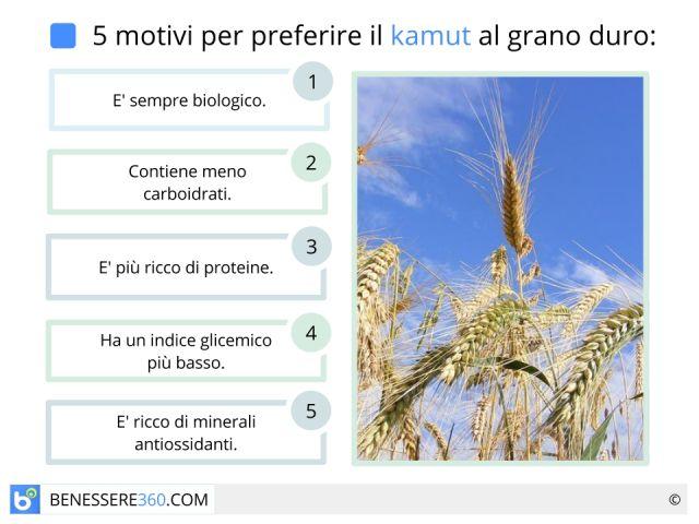 Kamut: proprietà, benefici, calorie e valori nutrizionali del cereale