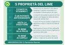Lime: proprietà, valori nutrizionali e benefici dell'agrume
