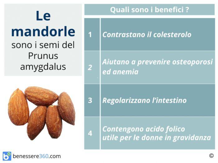 calabacin y acido urico que frutas tienen acido urico que hacer para bajar el nivel de acido urico