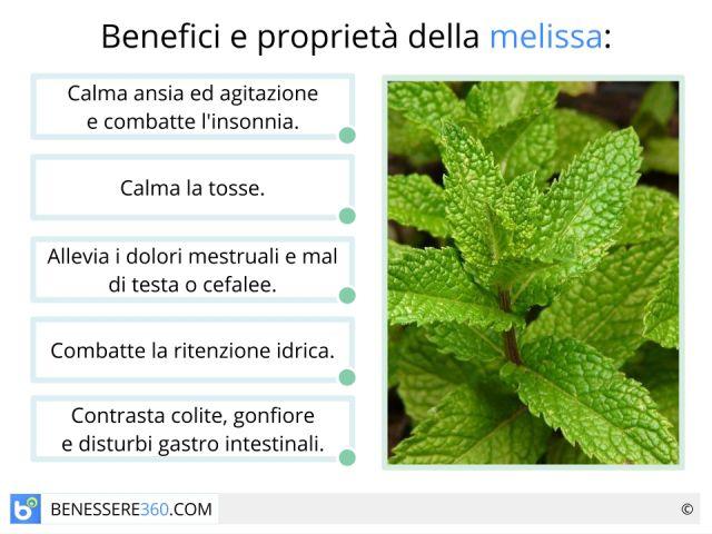 Melissa: proprietà terapeutiche e cosmetiche, benefici e controindicazioni