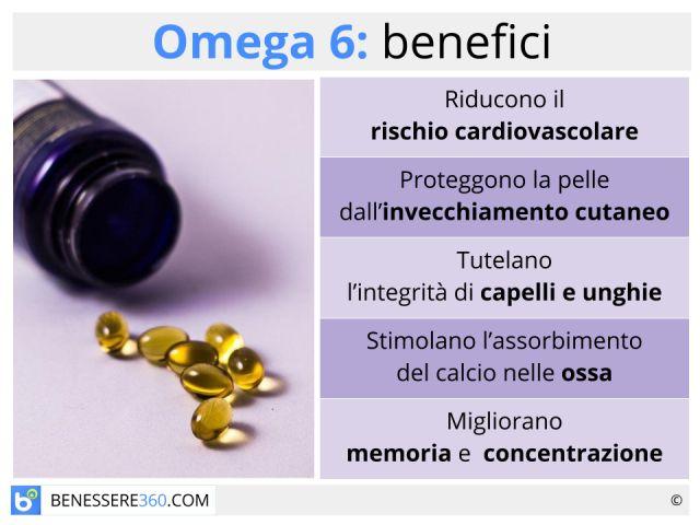 Omega 6: cosa sono? Benefici ed alimenti che ne sono ricchi