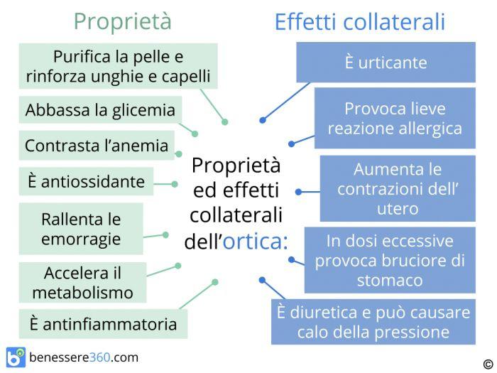 Proprietà ed effetti collaterali dell'ortica