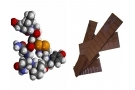 Ossitocina : cos'è? Dove si trova? Effetti e rischi dell'ormone dell'amore