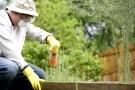 Pesticidi: cosa sono. Utilizzi, rischi e classificazione.