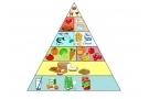 Piramide alimentare: cos'è? Alimenti e quantità per bambini ed adulti