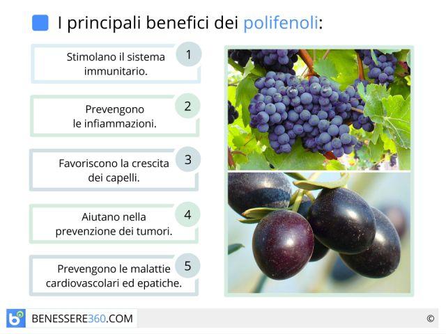 Polifenoli: antiossidanti contenuti in vino, oli e altri alimenti