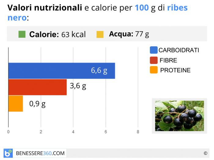 Calorie e valori nutrizionali del ribes nero