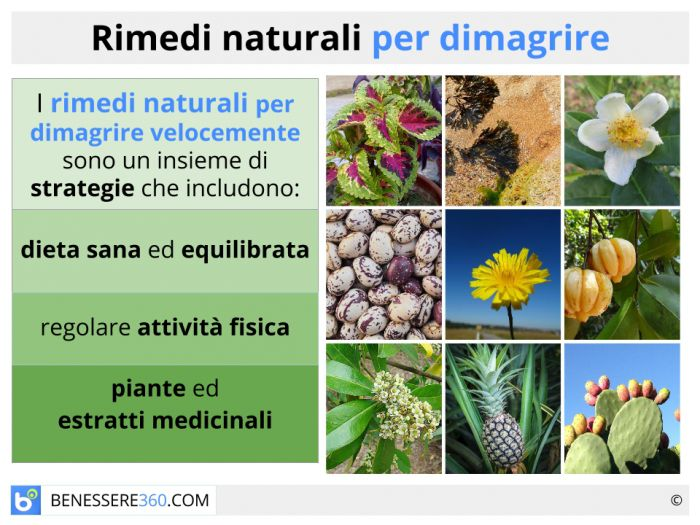 Rimedi naturali per dimagrire prodotti efficaci per for Dimagrire interno coscia benessere 360