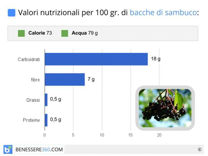 Valori nutrizionali e calorie del sambuco