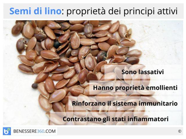 Semi di lino: proprietà, calorie, utilizzo, benefici  e controindicazioni