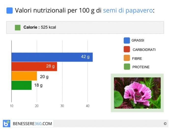 Calorie e valori nutrizionali dei semi di papavero