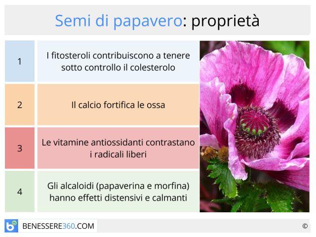 Semi di papavero: benefici, controindicazioni, calorie, proprietà nutrizionali e ricette