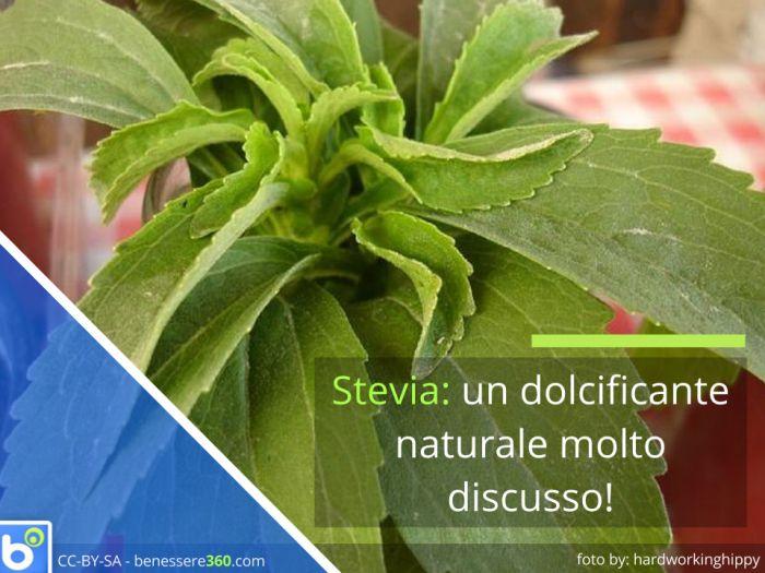 luso della stevia per perdere peso