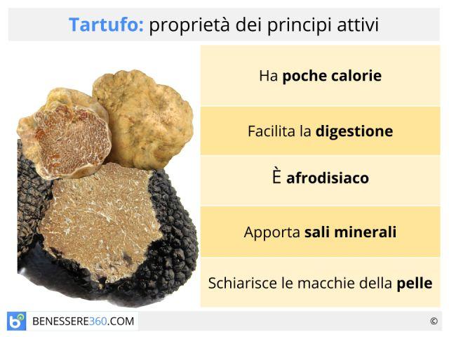 Tartufo bianco o nero: proprietà, controindicazioni e valori nutrizionali