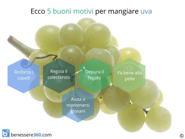 Uva: proprietà, calorie, valori nutrizionali, benefici e controindicazioni