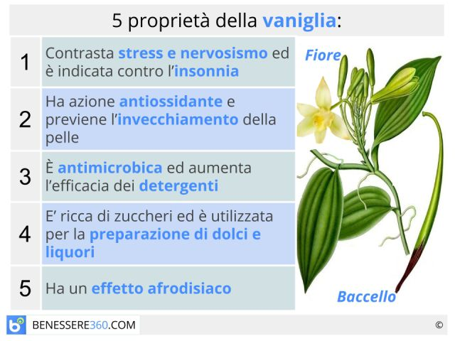 Vaniglia: proprietà dell'essenza e dell'olio essenziale