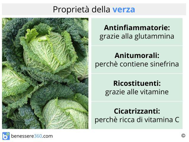 Verza: tipi, calorie, valori nutrizionali e proprietà
