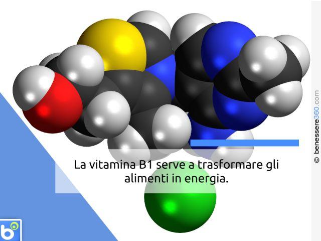 Vitamina B1 negli alimenti: dove si trova ed a cosa serve la Tiamina